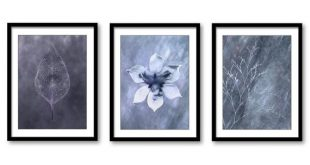 Navy Blue Grey Flower Leaf Branch Setof 3 Printable Bathroom Print INSTANT DOWNLOAD Art Nature Wall Decor Modern Abstract Bedroom Watercolor
